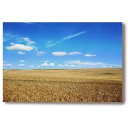 Krajobraz Obraz na Płótnie...