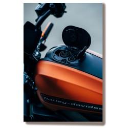 Motocykl Obraz na Płótnie...