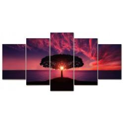 Drzewo zachód słońca...