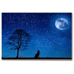 Pełnia księżyca drzewo wilk...